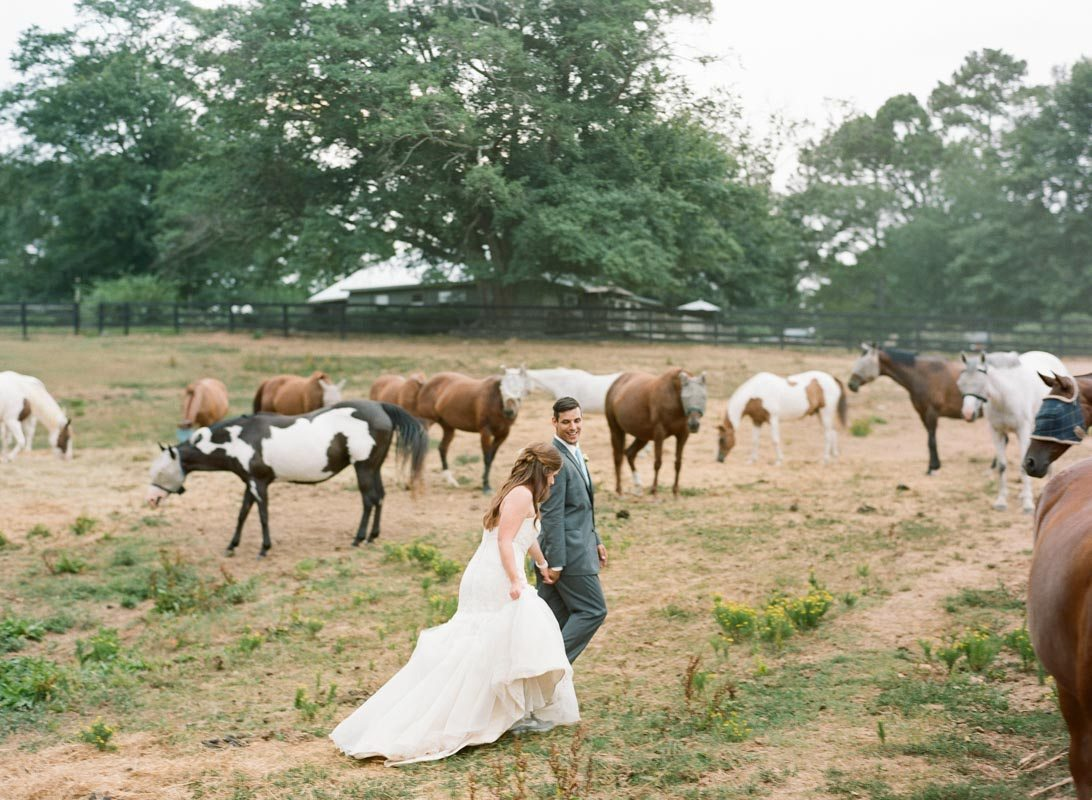 bride-and-groom-with-horses-anna-shakleford-51