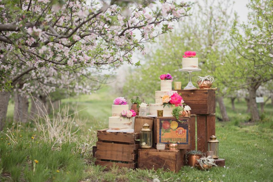 Wedding sweets table orchard wedding