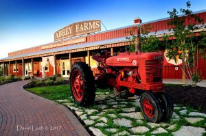 Abbey Farms in Aurora, Illinois