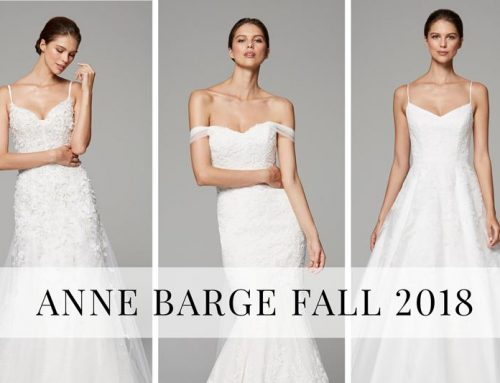 Anne Barge Fall 2018 Collection