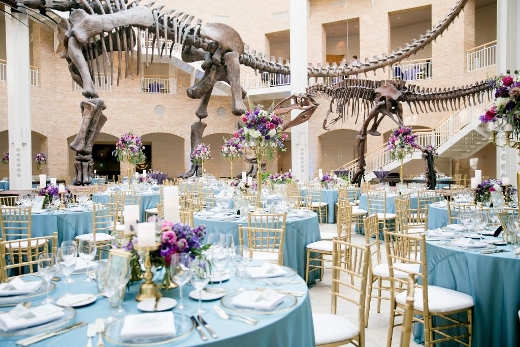 Welcome To The Fernbank Museum of Natural History