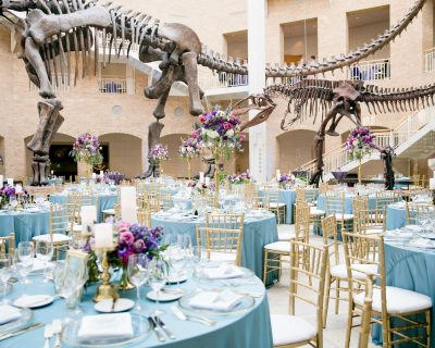 Fernbank Museum Of Natural History Wedding Venue