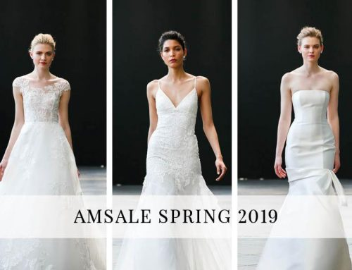 Amsale Spring 2019 Collection