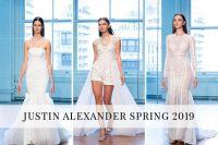Justin Alexander Spring 2019