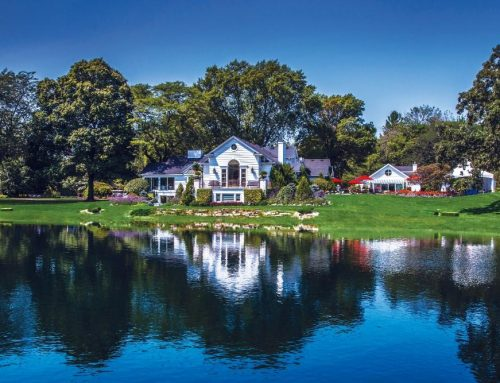 Venue Viewpoint – Wandering Tree Estate