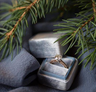 12 days of engaged christmas