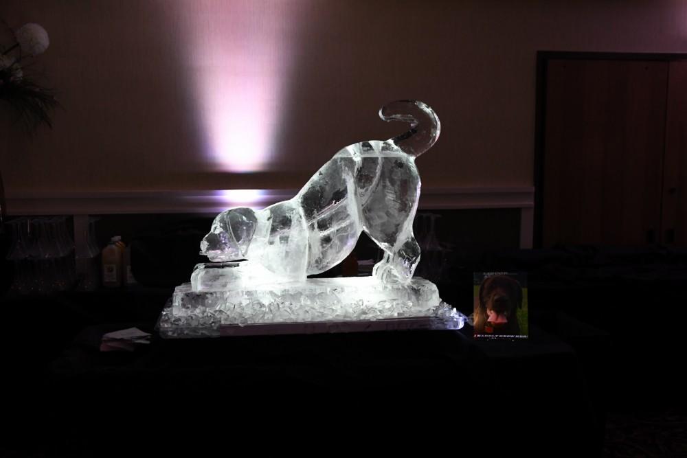 amanda bradley ice martini luge