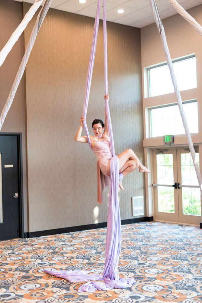 kajal akash pearl banquets & conference center aerial dancer wedding reception