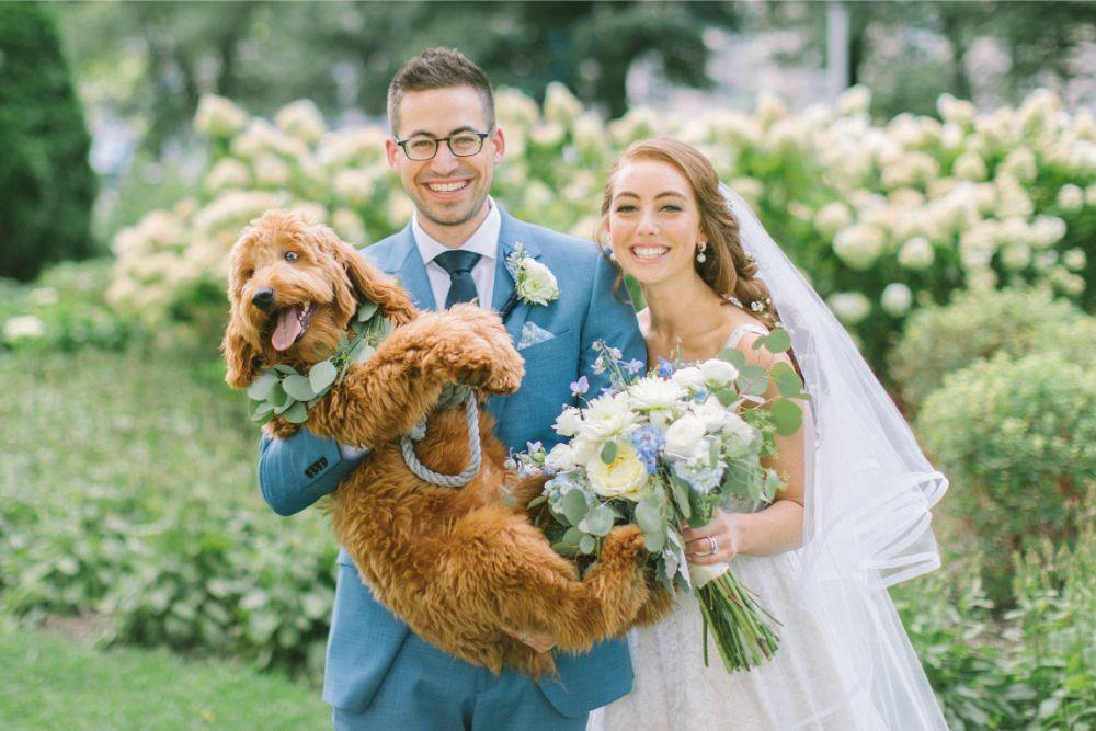 allie matthew the blackstone hotel chicago wedding bride and groom with dog
