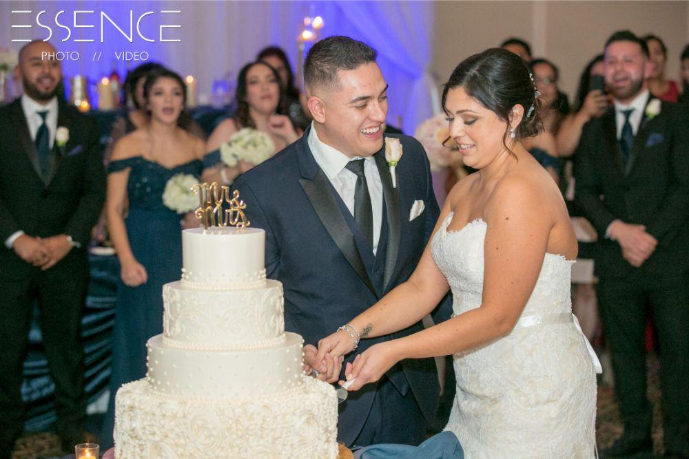 vanesa leonardo cotillion banquets chicagoland wedding cutting cake