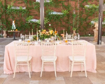 Superb Party Rentals Wedding Rentals Tent Rentals The Bralicious Painted Fabric Chair Ideas Braliciousco