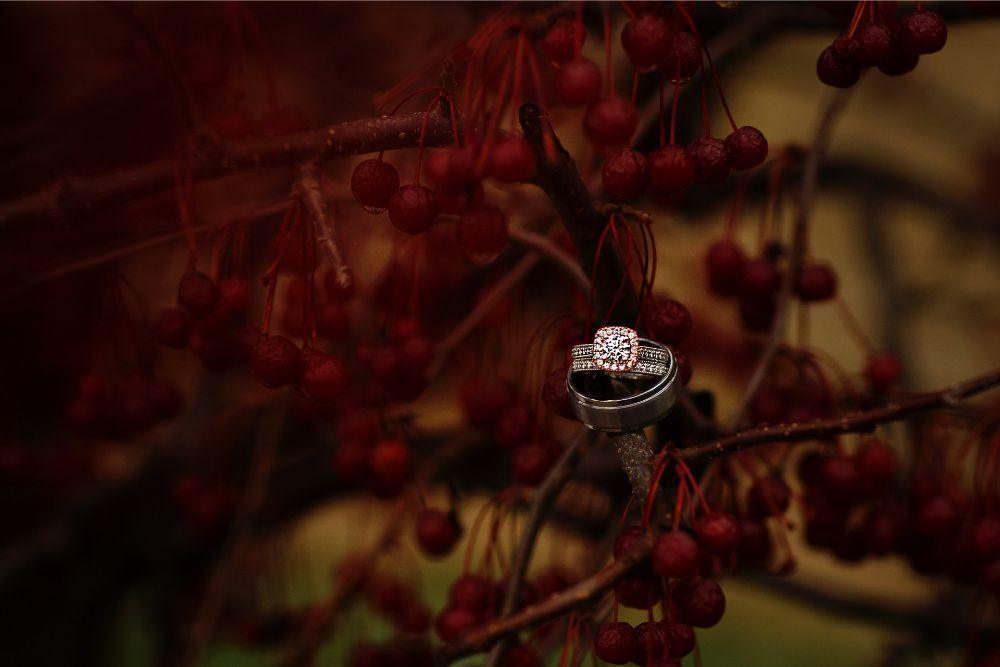 meaghann travis cog hill golf & country club chicago, il wedding rings