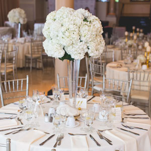 Galleries & Museums Wedding Venues In CHICAGO
