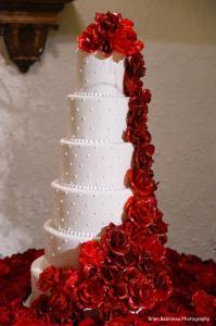 Donnie Walhberg Jenny McCarthy Wedding 12